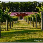 Willow Creek Farm Timber Frames