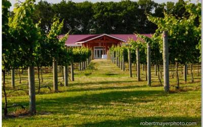 Willow Creek Farm