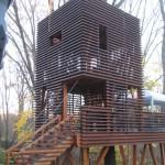 timber frame treehouse