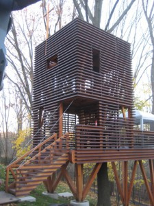 timber frame treehouse