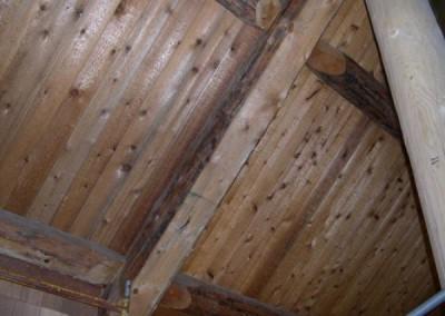 Pine-Barrens-4_lancotf